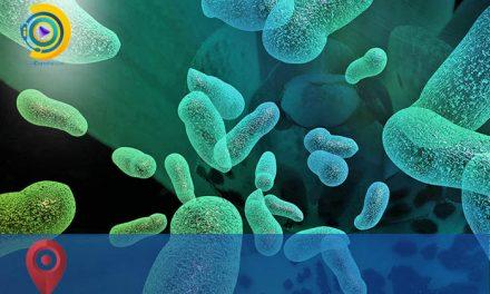محل قبولی و دانشگاههای پذیرنده کنکور سراسری میکروبیولوژی 98