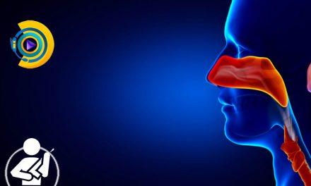 بیماری های گوش، حلق و بینی در معافیت پزشکی