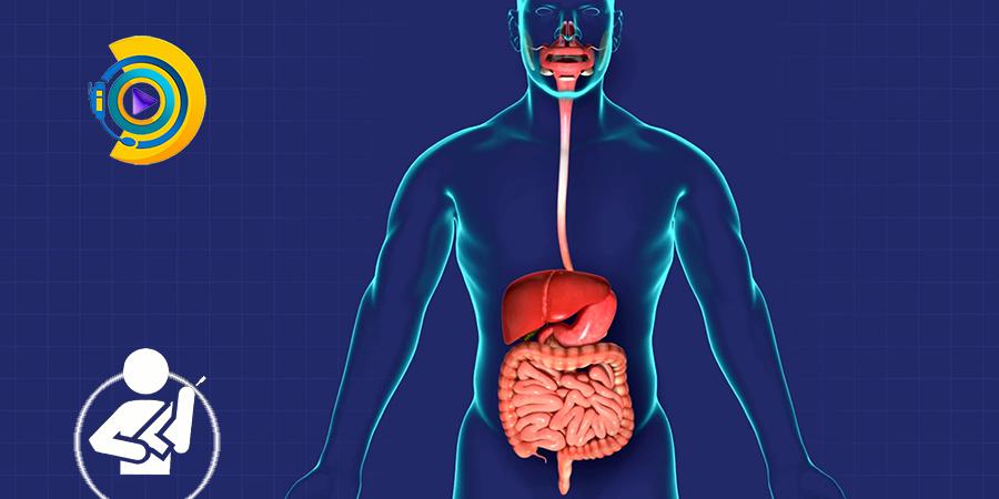 بیماری های دستگاه گوارش و جراحی عمومی در معافیت