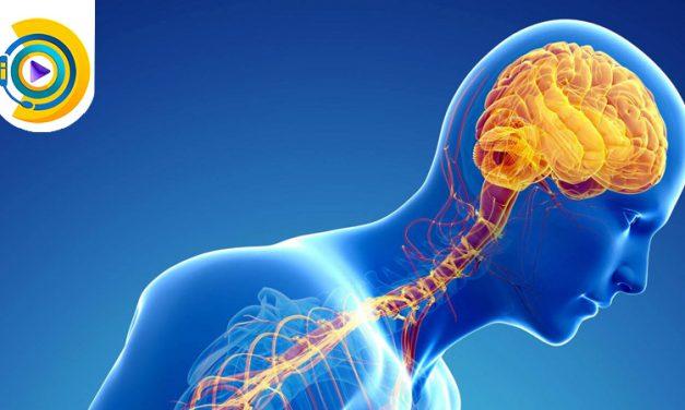بیماری های داخلی مغز و اعصاب در معافیت