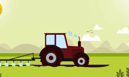 معرفی گرایش های ارشد زراعت و اصلاح نباتات