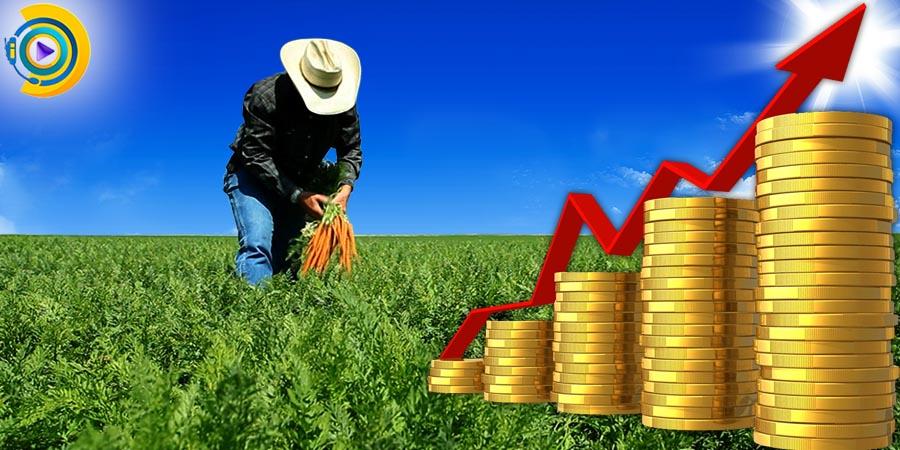 گرایش های ارشد اقتصاد کشاورزی