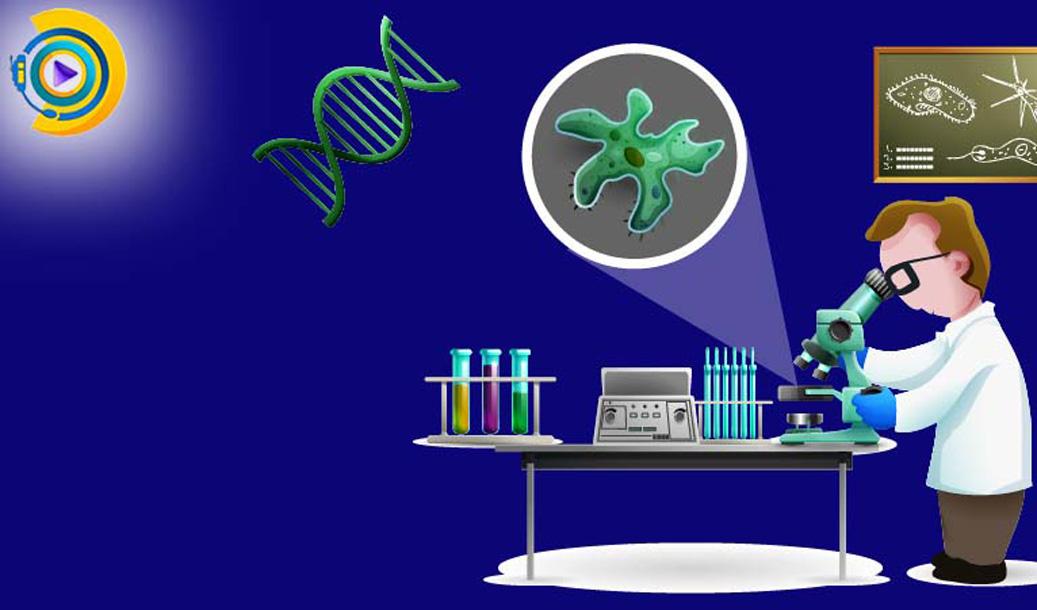 گرایش های ارشد میکروبیولوژی