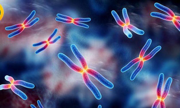 منابع دکتری ژنتیک مولکولی