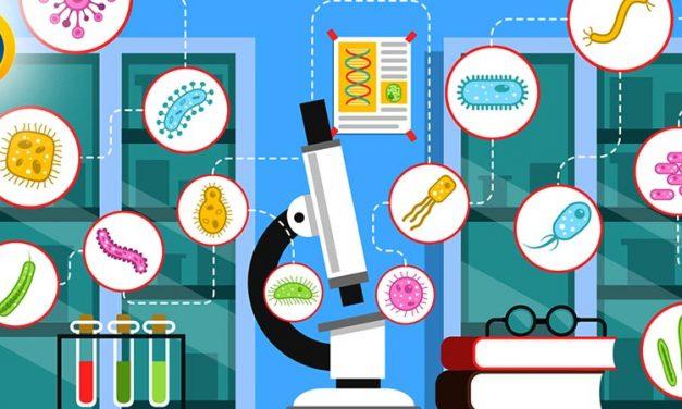 گرایش های دکتری باکتری شناسی
