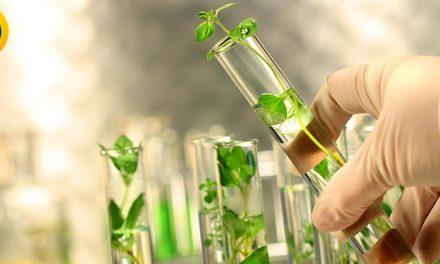 منابع ارشد زیست شناسی گیاهی