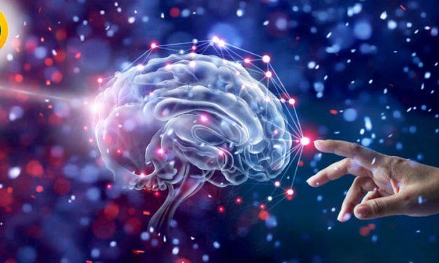 ظرفیت پذیرش دکتری روانشناسی آزاد