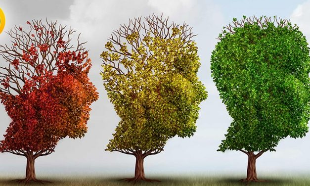 از بیماری آلزایمر چه می دانید؟