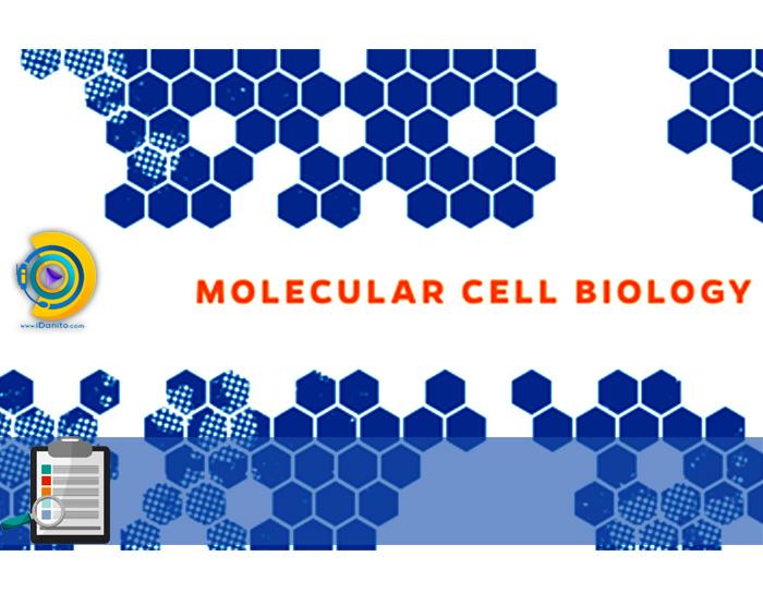 انتخاب رشته ارشد زیست شناسی سلولی و مولکولی 98