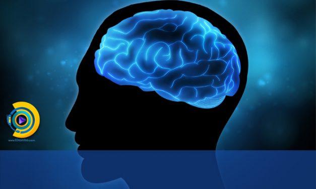 روشهای تقویت حافظه