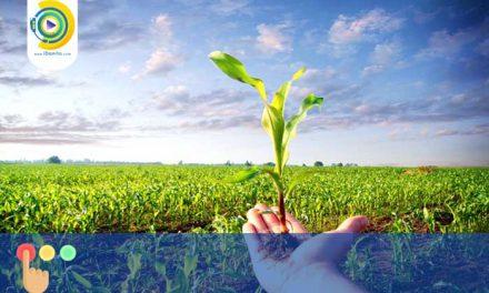 انتخاب رشته کاردانی بدون کنکور علمی کاربردی کشاورزی 98