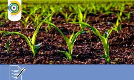 انتخاب رشته کاردانی به کارشناسی بدون کنکور آزاد کشاورزی