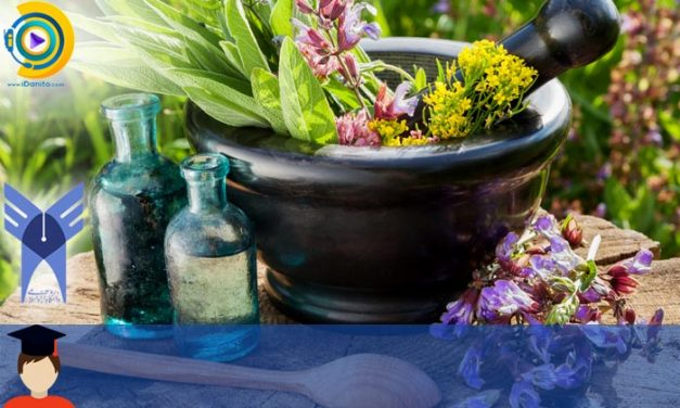 زمان و شرایط ثبت نام کاردانی به کارشناسی بدون کنکور آزاد گیاهان دارویی 98